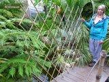 Harmonica Bambus 90 x 180 cm_