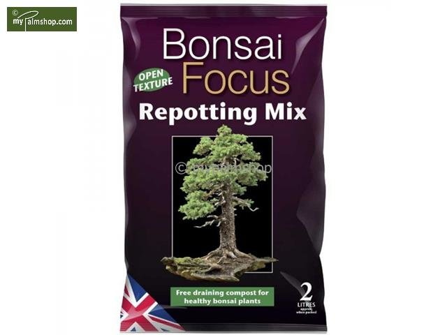 Bonsai Focus Repotting Mix - 2 ltr