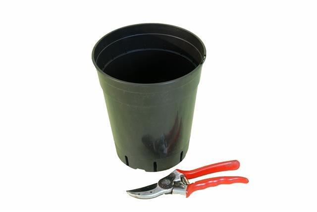 Tiefer runder Palmentopf 4.0 Liter