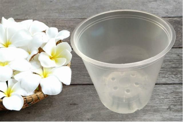 Orchideentopf transparent