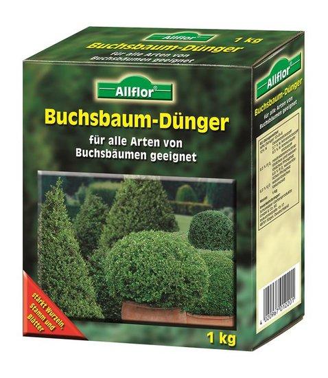 Buchsbaum Dünger