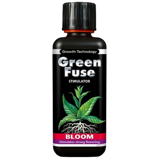 Green Fuse Stimulator Blüte