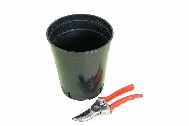 Tiefer runder Palmentopf 7.0 Liter