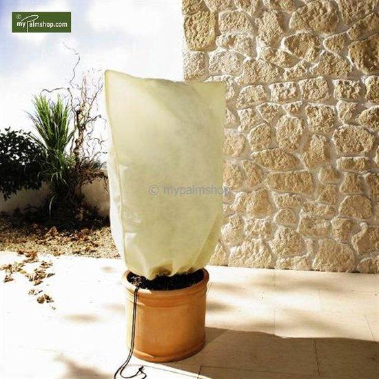 Winterschutz für Pflanzen quadratisch 180 x 120 cm XXL
