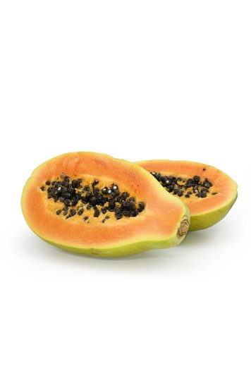 Carica papaya P11