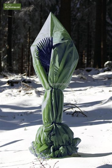 Winterschutz für Pflanzen Pyramidenform gesamthöhe 250 cm