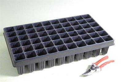 Anzuchtplatte für 60 Töpfe