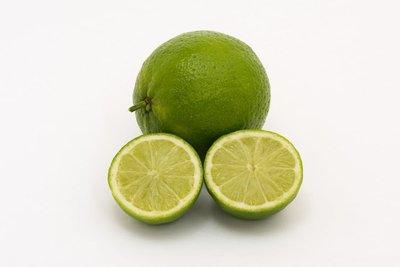 Citrus aurantifolia Lime Verde - Topf 2 ltr